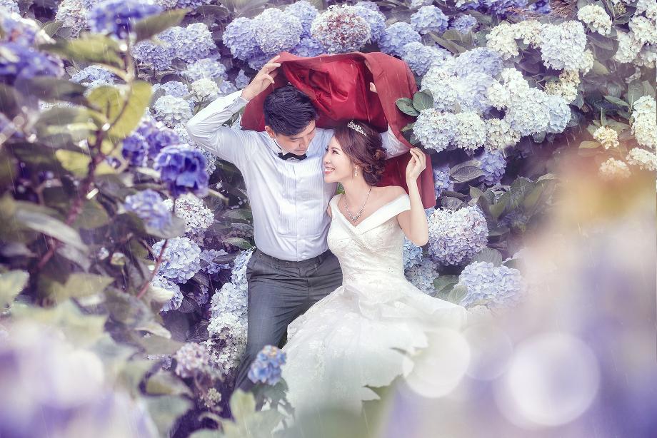 台灣婚紗,台北婚紗,陽明山真愛桃花源,竹子湖婚紗,繡球花婚紗,婚紗包套,婚紗基地,婚,婚紗微電影,婚紗側錄